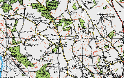 Old map of Tokers Green in 1919