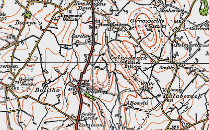 Old map of Tolcarne Wartha in 1919