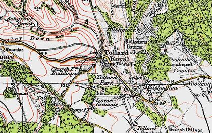 Old map of Tollard Royal in 1919