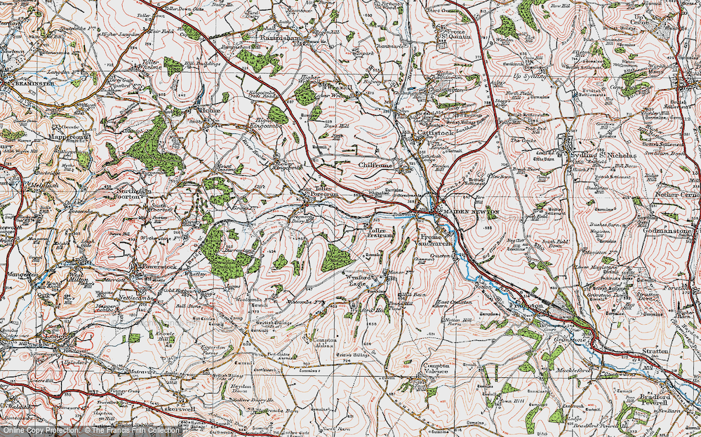 Old Map of Historic Map covering Wynford Wood in 1919