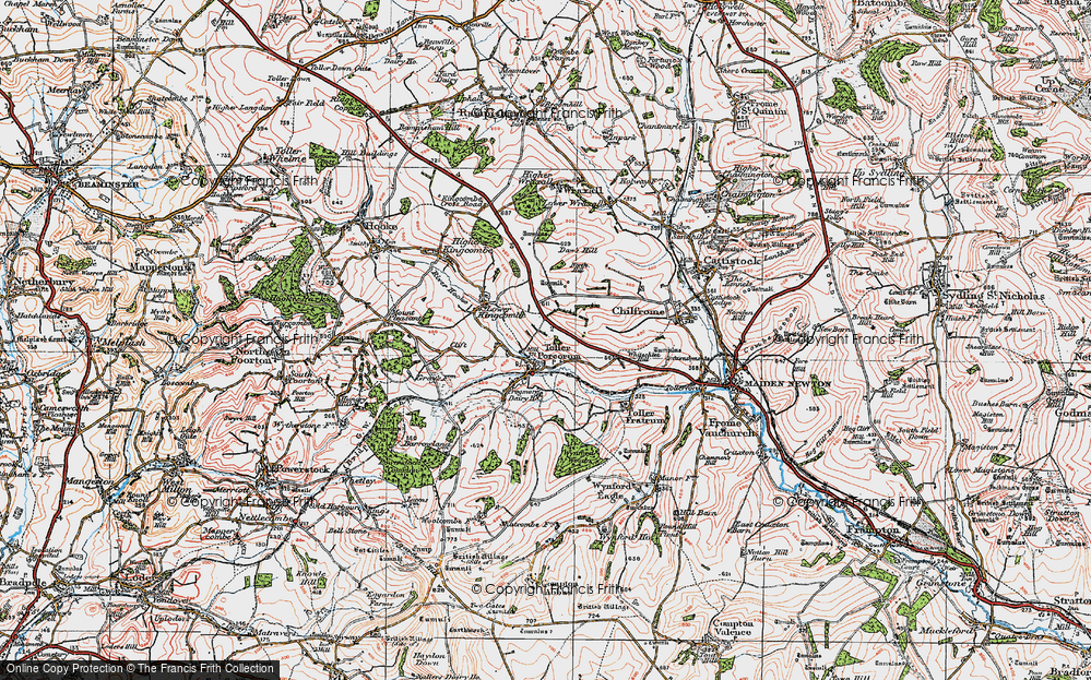 Old Map of Toller Porcorum, 1919 in 1919