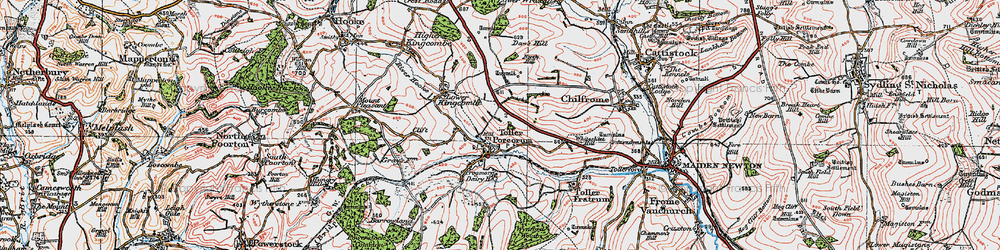 Old map of Toller Porcorum in 1919