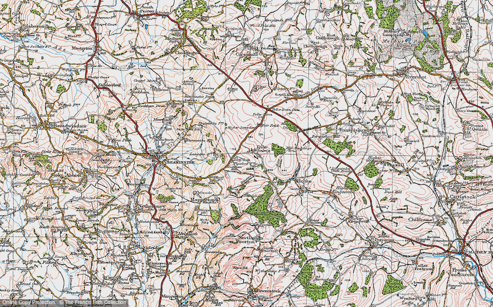 Old Map of Toller Whelme, 1919 in 1919