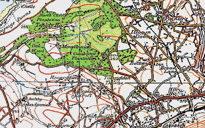 Old map of Tolvaddon Downs in 1919