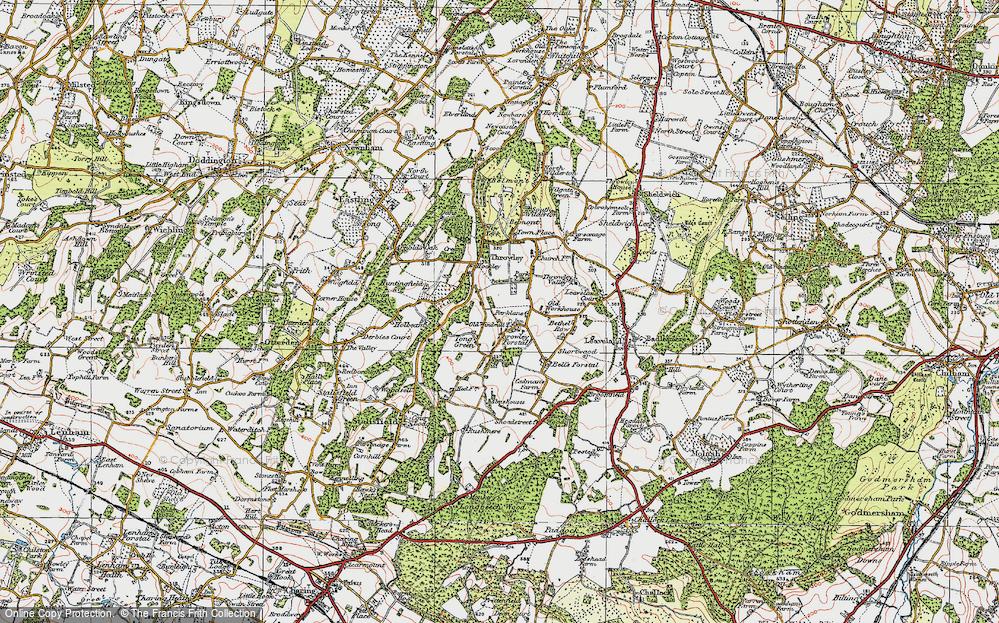 Tong Green, 1921