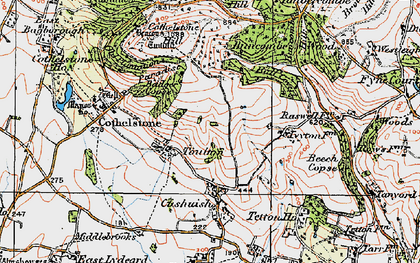 Old map of Badger Copse in 1919