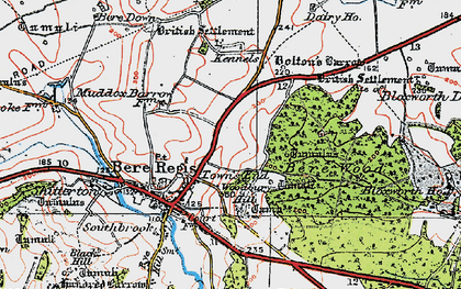 Old map of Woodbury Hill (Fort) in 1919