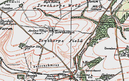 Old map of Badger Wood in 1924