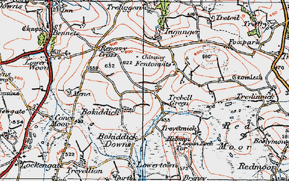 Old map of Trebell Green in 1919