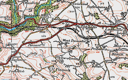 Old map of Treburgie in 1919