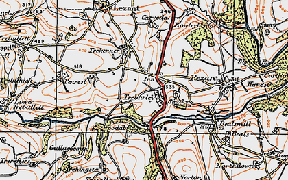 Old map of Treburley in 1919