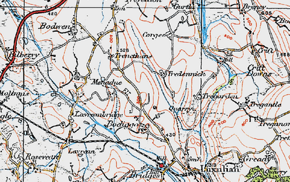 Old map of Tredinnick in 1919