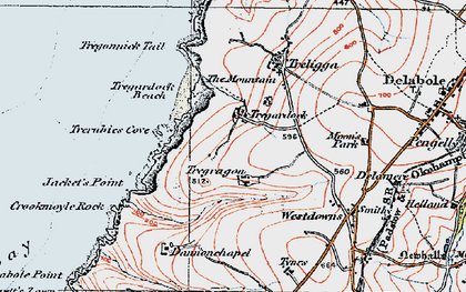 Old map of Tregardock in 1919
