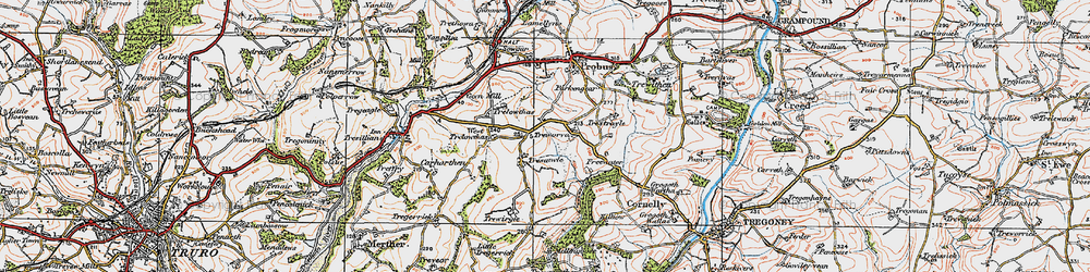 Old map of West Trelowthas in 1919