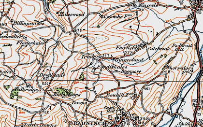 Old map of Bagmore in 1919