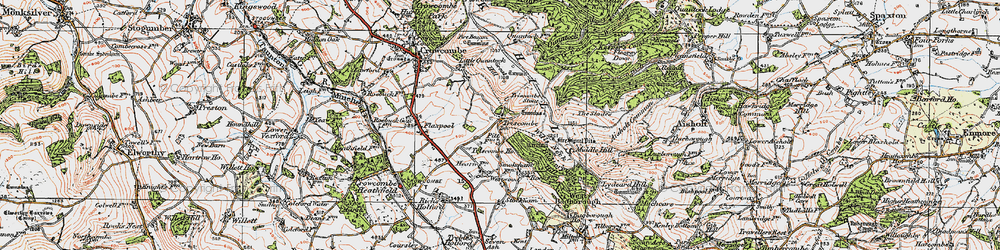 Old map of Wills Neck in 1919