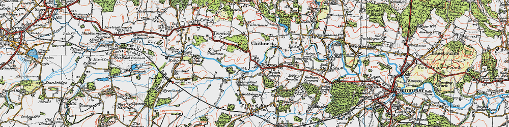 Old map of Trotton in 1919