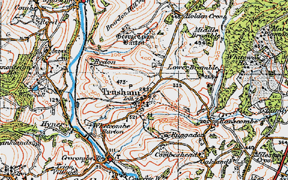 Old map of Whiteway Wood in 1919