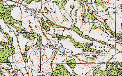 Old map of Turville Heath in 1919