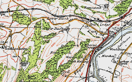 Old map of Wingate Wood in 1920