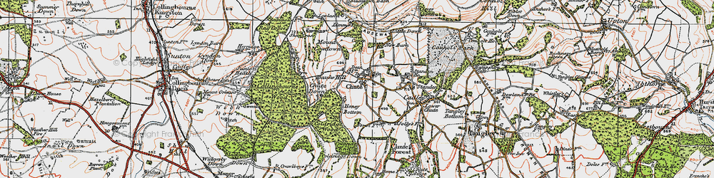Old map of Limmer Copse in 1919