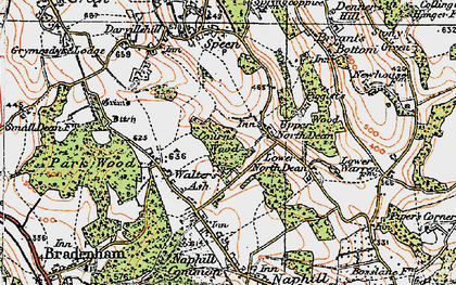 Old map of Upper North Dean in 1919