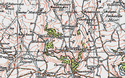 Old map of Warleggan in 1919