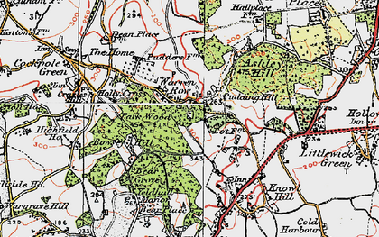 Old map of Ashley Hill Forest in 1919