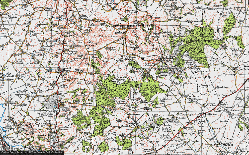 Old Map of Historic Map covering Ashmore Wood in 1919