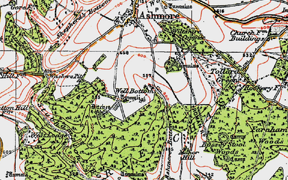 Old map of Ashmore Wood in 1919