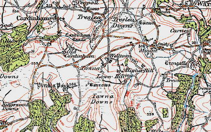 Old map of Welltown in 1919