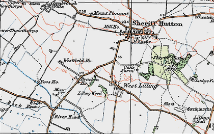 Old map of Lilling Wood in 1924