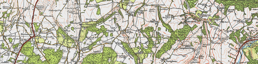 Old map of West Marden in 1919