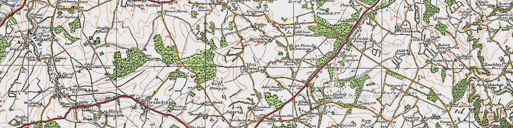 Old map of West Tisted in 1919