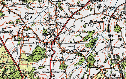 Old map of Whiteland Wood in 1921