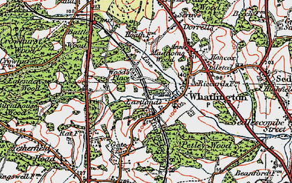 Old map of Whatlington in 1921