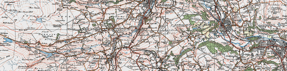 Old map of Whins Wood in 1925