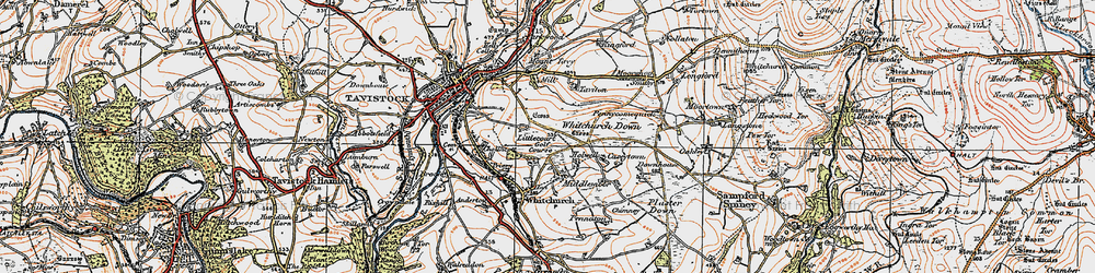 Old map of Whitchurch Down in 1919