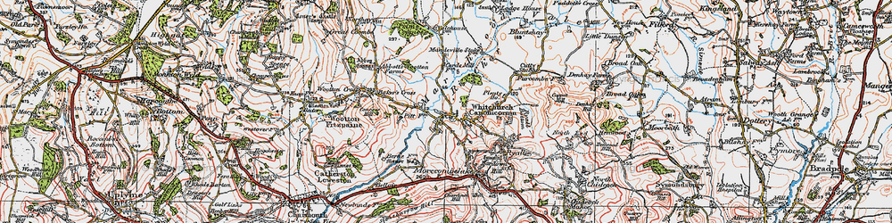 Old map of Whitchurch Canonicorum in 1919