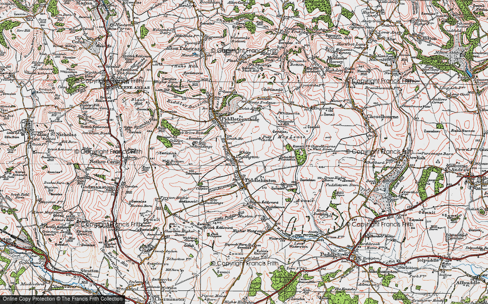 Old Map of White Lackington, 1919 in 1919