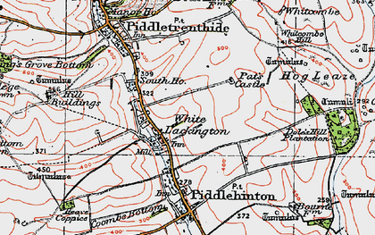 Old map of White Lackington in 1919