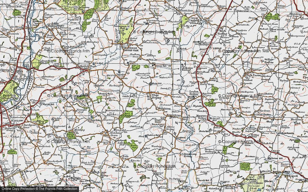 Old Map of White Roothing, 1919 in 1919