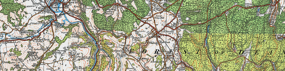 Old map of Whitecliff in 1919