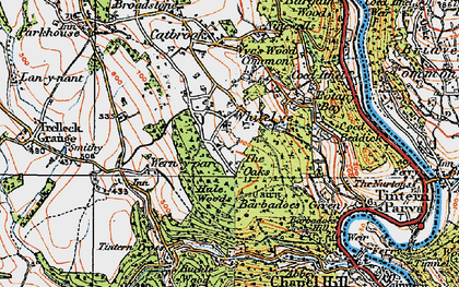 Old map of Whitelye in 1919