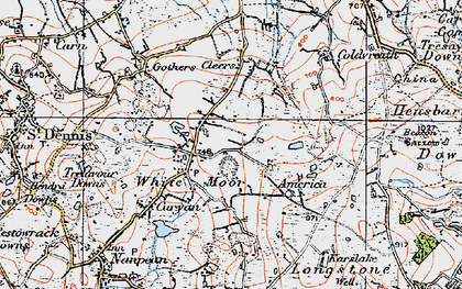 Old map of Whitemoor in 1919