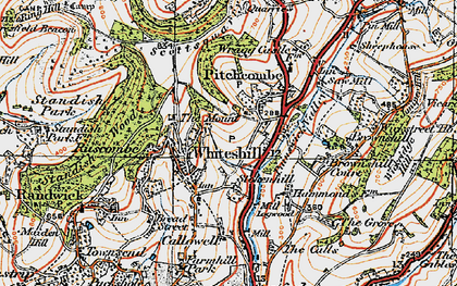 Old map of Whiteshill in 1919
