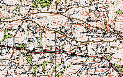 Old map of Whitestone Wood in 1919