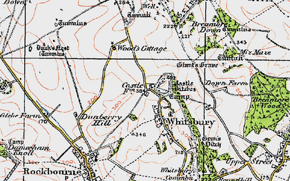 Old map of Whitsbury in 1919
