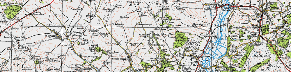 Old map of Whitsbury Down in 1919