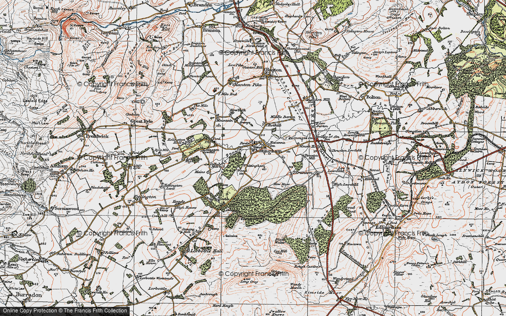 Whittingham, 1925